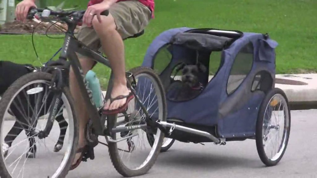 Aosom Elite Pet Bike Carrier / Trailer Review