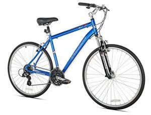 Best Fitness Bikes For Men
