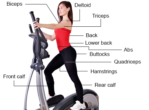 full body elliptical