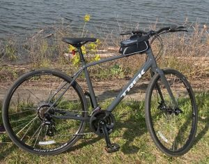 Read more about the article Trek FX1 Review